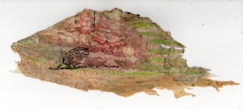 The Bush: Watercolour and Ink on Australian Paperbark