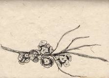 Cyprus: Pen on Handmade Paper
