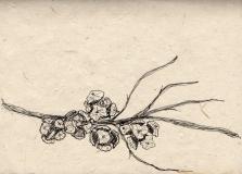 Cyprus: Pen on Handmade Paper