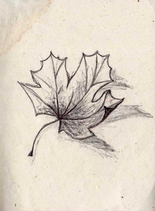 Biro on Handmade Paper